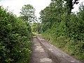 Lane to Esgair farm - geograph.org.uk - 1383433.jpg