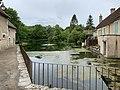 Le lac des Sources à Druyes (Yonne, France).jpg