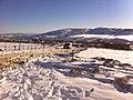 Les montagnes enneigées de SETIF 2 - panoramio.jpg