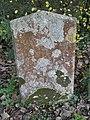 Lichened Gravestone, St. Andrew's Church, Wootton - geograph.org.uk - 1585857.jpg