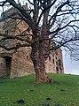 Linlithgow EH49, UK - panoramio (8).jpg