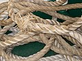 Lisboa Old Boats Rope (57566234).jpg