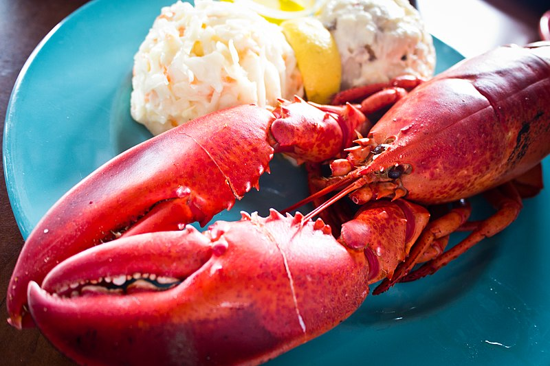 File:Lobster Dinner (6013079655).jpg