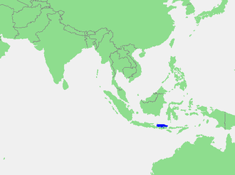 Bali Sea - The location of the Bali Sea, shown in blue.