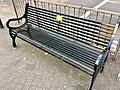 Long shot of the bench (OpenBenches 5558-1).jpg