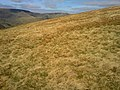 Longsledale - panoramio (8).jpg
