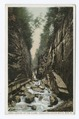 Looking up Flume, Franconia Notch, New Hampshire (NYPL b12647398-73980).tiff