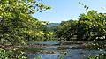 Looking up the Tuckasegee.jpg