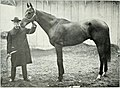 Lovers of the horse - brief sketches of men and women of the Dominion of Canada devoted to the noblest of animals. - (1909) (14742747016).jpg