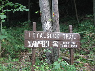 Loyalsock Trail - Loyalsock Trailhead in Lycoming County