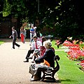 Lunchtime in the gardens - geograph.org.uk - 1432578.jpg