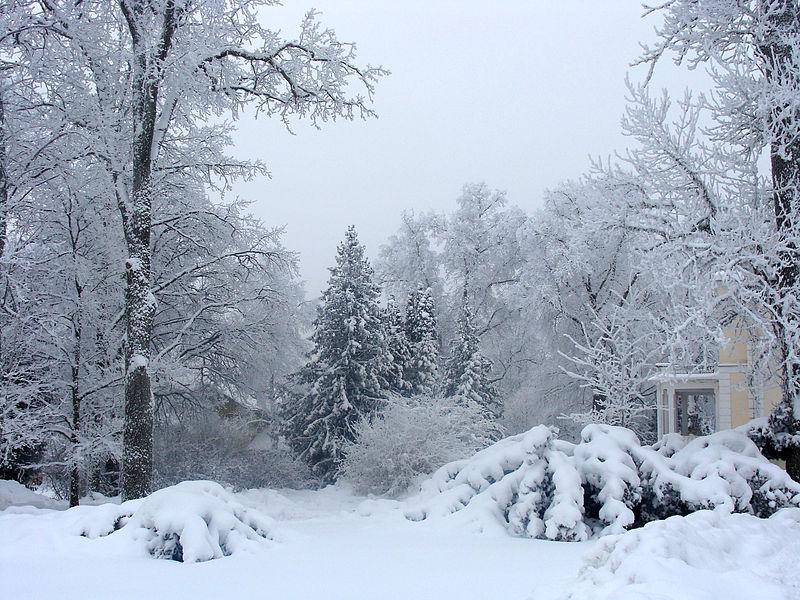 File:Luua mõisa esine talvel.JPG