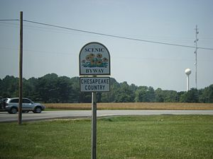 Maryland Route 213 - Shield for Chesapeake Country Scenic Byway on MD 213 southbound before intersection with US 50 in Wye Mills