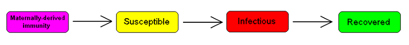 MSIR compartmental model
