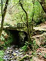 Madeira2 029.jpg
