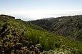 Madeira (2673513001).jpg