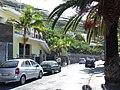 Madeira - Camara De Lobos (2093421264).jpg