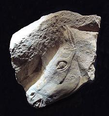 http://upload.wikimedia.org/wikipedia/commons/thumb/b/ba/Magdalenian_horse.jpg/225px-Magdalenian_horse.jpg