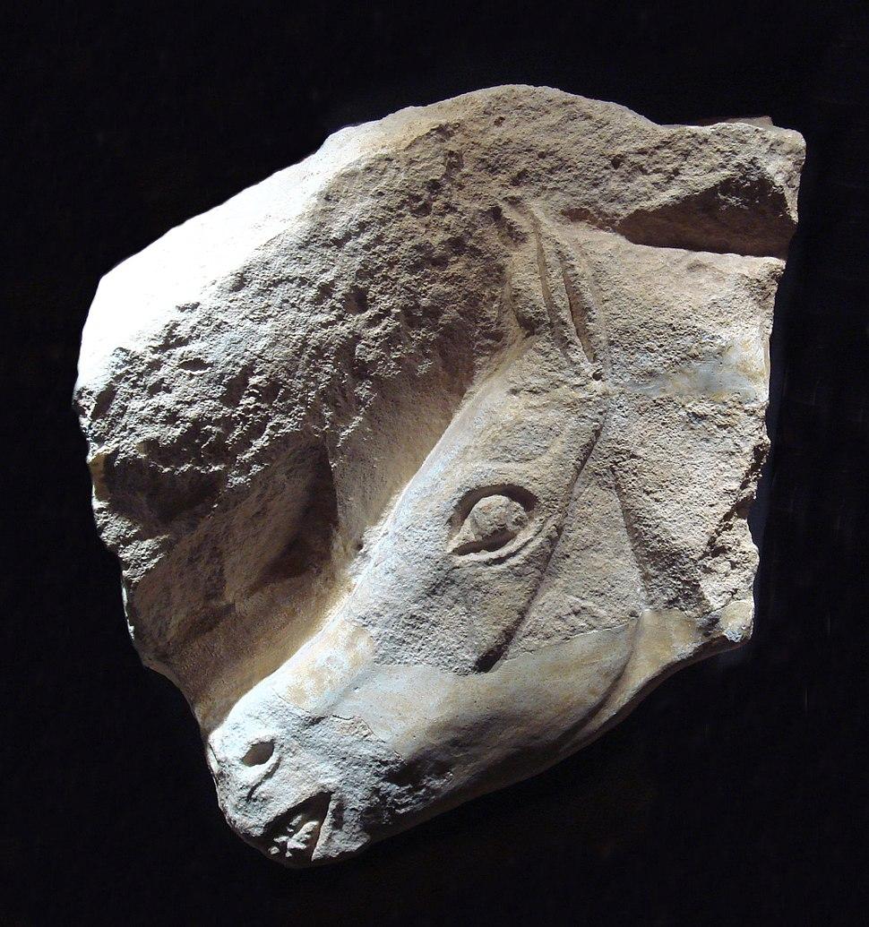 Magdalenian horse