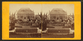 Main Conservatory . Shaw's Garden, St. Louis, Mo, from Robert N. Dennis collection of stereoscopic views.png