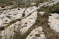 Malta - Rabat - Triq San Pawl tal-Qliegha - Bingemma Gap Cart Ruts 02 ies.jpg