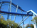 Manta at SeaWorld Orlando 37.jpg