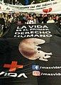 Marcha por La Vida Argentina 2017.jpg