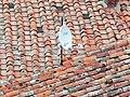 Marciana Alta - Altstadtdächer 1.jpg