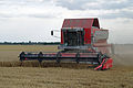 Massey Ferguson Cerea combining Thorney's Field in New Holland, England 3.jpg