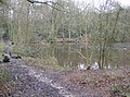 Medieval fish ponds, Lower Common - geograph.org.uk - 350283.jpg
