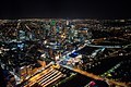 Melbourne From Above (147369365).jpeg