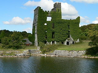 Menlough Castle - geograph.org.uk - 288543.jpg