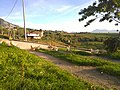 Miraldo - panoramio.jpg