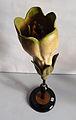 Modell der Blüte von Symphytum officinale (Echter Beinwell) -Osterloh Nr.36-.jpg