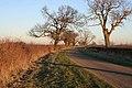 Moor Lane near Pickworth - geograph.org.uk - 329687.jpg