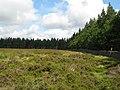 Moorland and plantations near Cocklake - geograph.org.uk - 505458.jpg