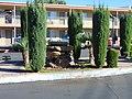 Motel fountain, Hurricane, Utah, Oct 16.jpg