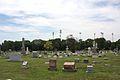 Mount Calvary Cemetery 2011 07 14 IMG 0960.jpg