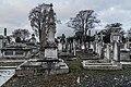 Mount Jerome Cemetery - 134369 (24902224118).jpg