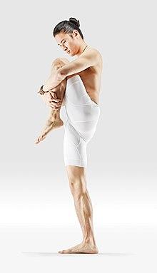 220px Mr yoga chin to knee wind relieving yoga asanas Liste des exercices et position à pratiquer