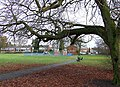 Muchall Park, Penn, Wolverhampton - geograph.org.uk - 1087301.jpg