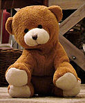 Nalle - a small brown teddy bear.jpg