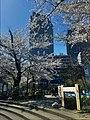 Nan'o Park Nishi-Shimbashi area - Tokyo - April 03 2019 01-41 PM.jpeg
