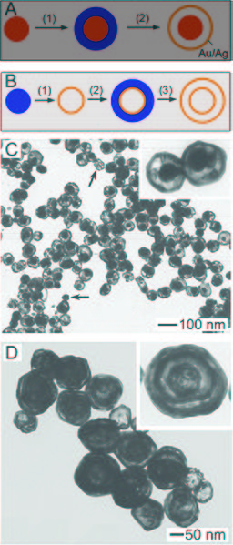 File:Nanoshells and nanorattles.jpg