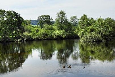 "Naturschutzgebiet ""In den Weiden bei Blankenheim"" (1).jpg"
