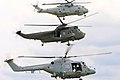 Navy Helicopters - RNAS Yeovilton 2006 (2446042098).jpg