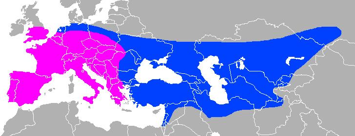 Neanderthal Range