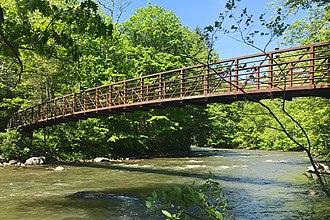 Nestell Kipp Anderson - Ned Anderson Memorial Bridge crossing the Ten Mile River