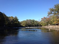 Neshaminy Creek in Tyler State Park.jpg