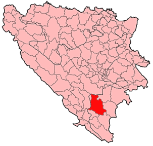 Nevesinje Municipality Location.png